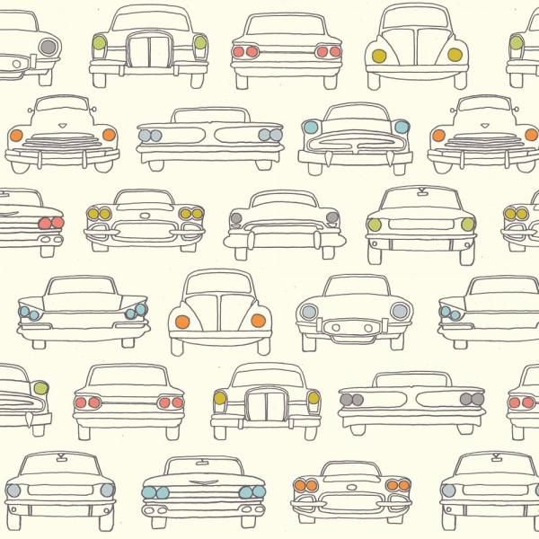 modelo envoltorio ecológico coche